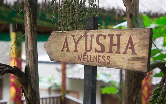 Svarga Loka Resort Ubud - Ayusha Wellness
